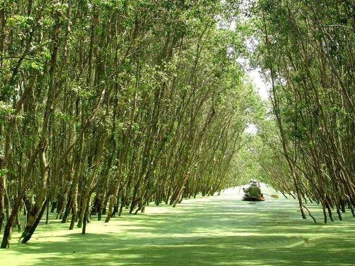 Khách sạn Hậu Giang gần khu sinh thái