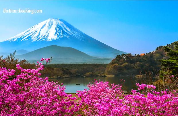 tour du lịch Nhật Bản 5N4Đ