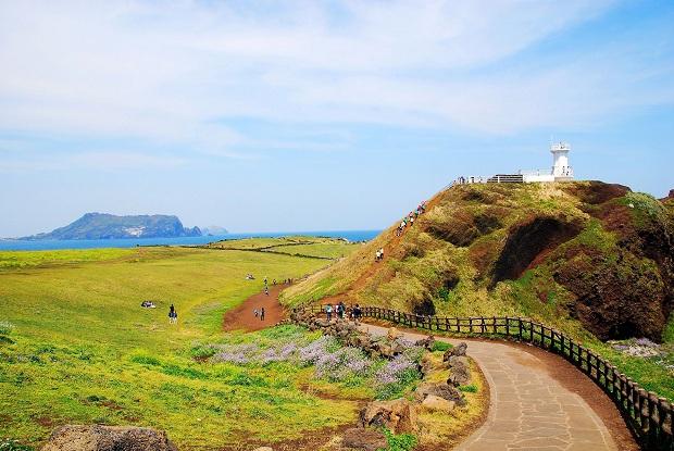 Khung cảnh xinh đẹp và tươi mát của đảo Jeju