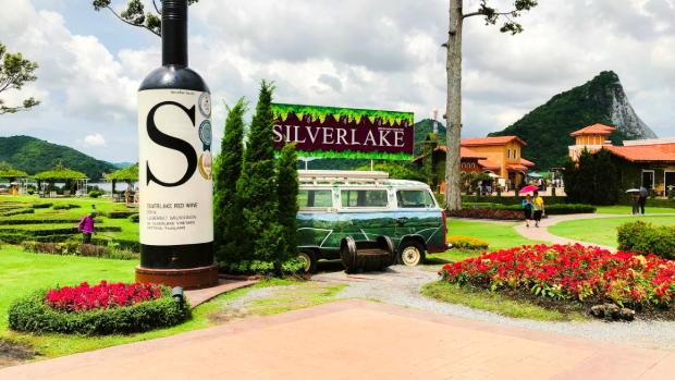 Vườn nho Silver Lake