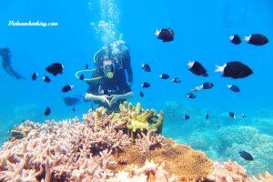 Tour du lịch Hà Nội – Phú Quốc 3N2Đ | Khám phá đảo ngọc phương nam