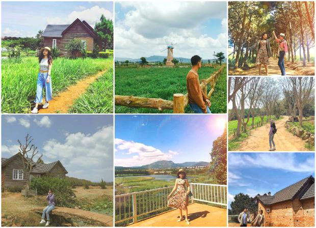 Đà Lạt Milk Farm - địa điểm du lịch Đà Lạt