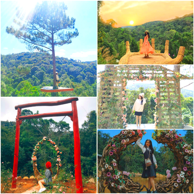 hoa sơn điền trang là một địa điểm du lịch Đà Lạt được yêu thích