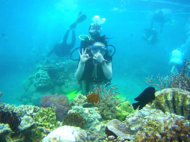 Lặn biển ở Bình Hưng - tour bình hưng giá rẻ