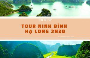Tour Ninh Bình – Hạ Long 3 ngày 2 đêm trọn gói, tiết kiệm | Khám phá vẻ đẹp di sản thiên nhiên Việt Nam