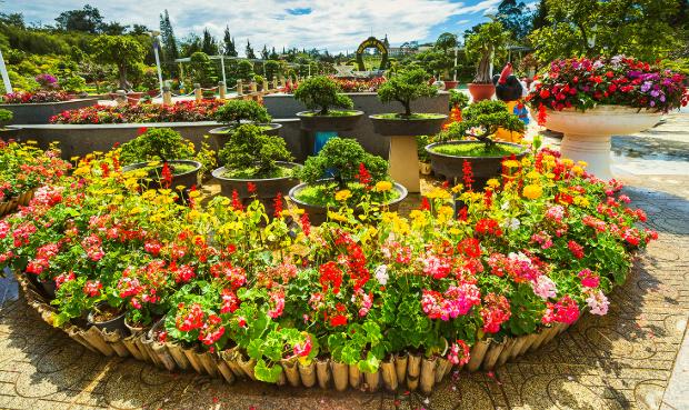 Vườn hoa trung tâm thành phố Đà Lạt - Tour Huế Đà Lạt 3N2Đ