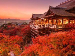 Tổng hợp 2021 | Các địa điểm du lịch Nhật Bản nhất định phải đến 1 lần trong đời