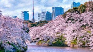 Vé máy bay Tết 2021 đi Tokyo rẻ nhất