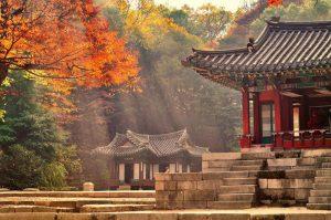 Những địa điểm du lịch mùa thu Hàn Quốc đẹp mê mẩn