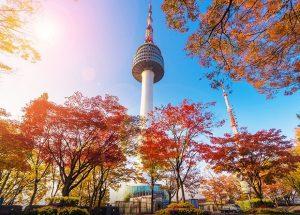 Du lịch Hàn Quốc tháng 10 – Những điểm đến tuyệt vời ngắm mùa lá vàng