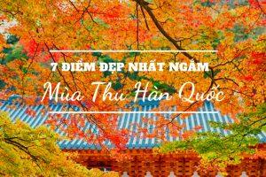 Khám phá vẻ đẹp mùa thu Hàn Quốc – Chuyến đi nhớ mãi của thanh xuân
