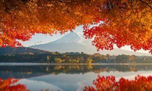 Tour Liên tuyến Nhật Bản – Bruinei – Tokyo – Núi Phú Sĩ