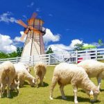 Tour Bangkok – Pattaya – Swiss Sheep Farm – Coral Island 5N4Đ