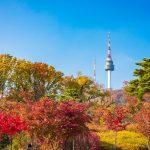 Tour du lịch Đà Nẵng – Hàn Quốc 4N3Đ | Seoul – Nami – Everland