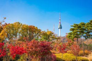 Tour du lịch Đà Nẵng – Hàn Quốc 4N3Đ   Seoul – Nami – Everland
