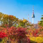 Tour Hàn Quốc Seoul – Ara Waterway – Đảo Nami – Everland 5N4Đ