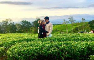 Tour Đà Lạt 3 ngày 3 đêm trọn gói – QUE Garden | Chùa Linh Phước | Đồi Chè Cầu Đất