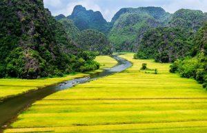 Tour du lịch Hà Nội – Hoa Lư – Tam Cốc – Bái Đính – Tràng An 3N2Đ | Về miền cố đô