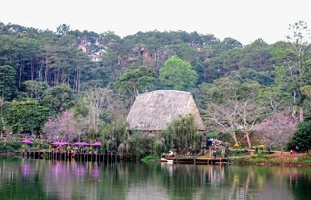 Tour du lịch Đà Nẵng – Pleiku – Kon Tum – Măng Đen 3N2Đ | Tây nguyên mùa hoa dại