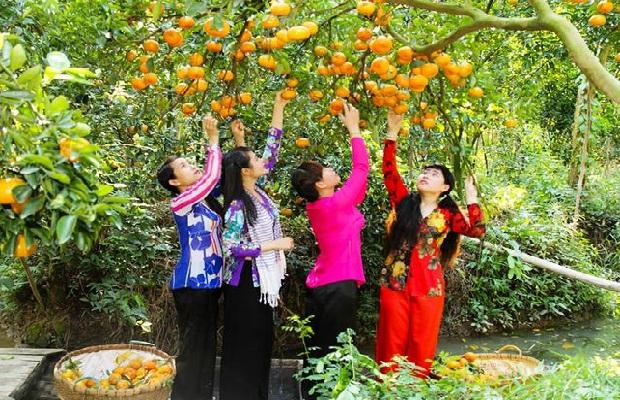 Tour du lịch TPHCM – Bến Tre 1 ngày | Trải nghiệm Vườn trái cây – Đi xe ngựa – Nghe đờn ca tài tử