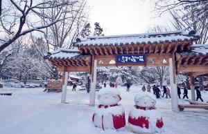 Tour du lịch Hàn Quốc 4 ngày 3 đêm: Seoul – Nami – Everland KH từ Đà Nẵng