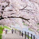 Tour du lịch Nhật Bản Osaka – Kyoto – Kobe 4N3Đ Tết giá rẻ