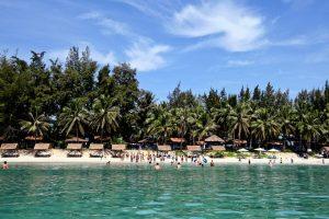 TTC Resort Premium Dốc Lết