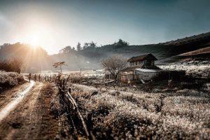 Kinh nghiệm du lịch Mộc Châu tháng 2 – Đi ngắm hoa mận trắng có gì đẹp?
