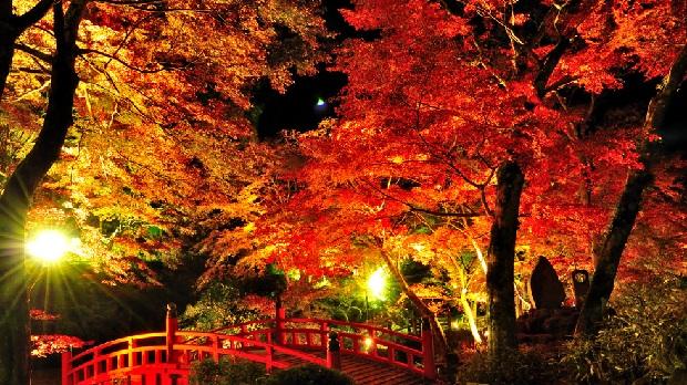 Du lịch lễ hội mùa thu Nhật Bản