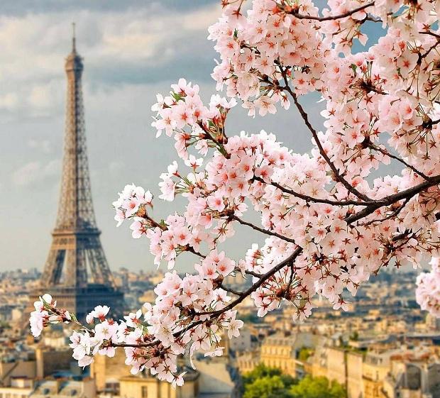 Du lịch Châu Âu - Thủ đô Paris Pháp mùa xuân