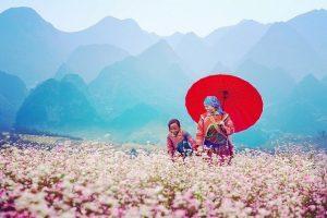 Top những địa điểm du lịch miền Bắc đẹp và lý tưởng nhất Việt Nam