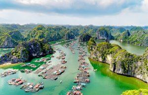 """Tour Cát Bà Vịnh Lan Hạ 3 Ngày 2 Đêm: Khám phá vẻ đẹp tiềm ẩn của """"Viên ngọc xanh"""" miền Bắc"""
