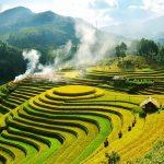 Tour Mù Cang Chải 2 Ngày 1 Đêm: Đèo Khau Phạ – Tú Lệ | Mùa vàng trên Tây Bắc
