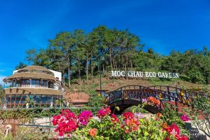 Combo 3N2Đ Mộc Châu Eco Garden Resort + Xe Limousine