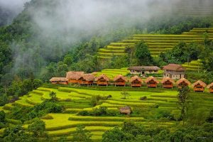 Hoang Su Phi Lodge Hà Giang