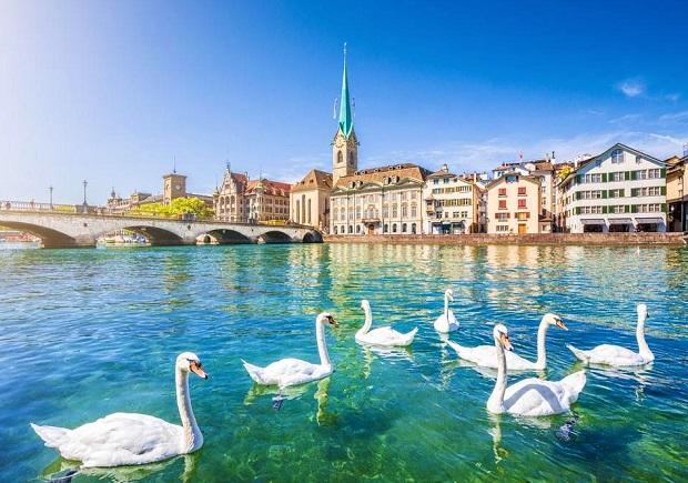 Dịch vụ làm visa đoàn tụ gia đình tại Thụy Sĩ cho bố mẹ, con cái, bạn đời