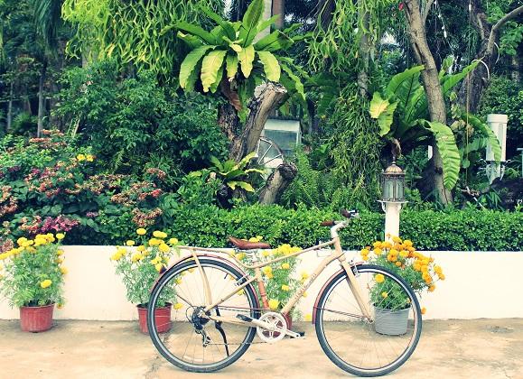 Combo Khách sạn Hawaii Phú Quốc