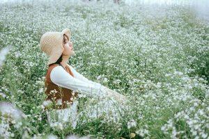 Bật mí những cánh đồng hoa tam giác mạch đẹp nhất Việt Nam