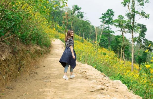 Tour Ba Vì 1 ngày giá rẻ từ Hà Nội | Ngắm hoa dã quỳ, thăm Làng văn hóa các dân tộc Việt Nam