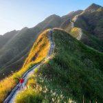 Tour Bình Liêu 2 Ngày 1 Đêm: Khám phá thiên đường cỏ lau miền Bắc
