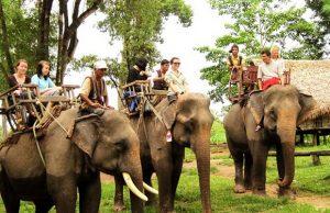 Tour Tết Tây Nguyên Đắk Lắk Gia Lai Pleiku 4N3Đ | Khám phá vương quốc cà phê