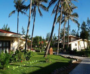 Combo Đà Nẵng 3N2Đ Sandy Beach Resort + Tham quan Rừng Dừa Bảy Mẫu + bữa trưa + Vé máy bay