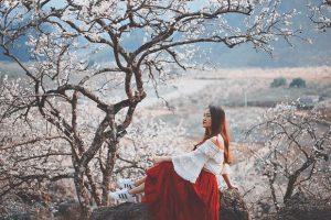 Du lịch Sapa tháng 1 – Tinh khôi tuyết trắng, lãng mạn sắc hoa