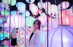 Vườn ánh sáng Lumiere | Địa điểm sống ảo mới toanh tại Đà Lạt
