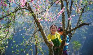 Du lịch Tết Hà Giang | Tết xinh đẹp trên khắp nẻo đường Hà Giang