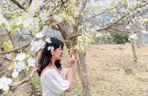 Tour Na Hang Tuyên Quang 2 ngày 1 đêm | Thăm Hồng Thái mùa hoa lê