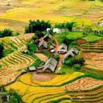 Tour Sapa Tả Phìn 2N1Đ | Tắm lá thuốc – trải nghiệm tinh hoa văn hóa dân tộc Dao