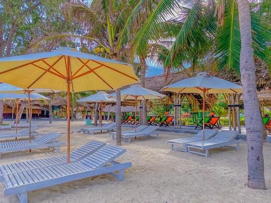 Combo Pax Ana Dốc Lết Resort