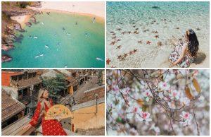 Tháng 3 nên đi du lịch ở đâu là đẹp nhất? Bật mí ngay những điểm đến hấp dẫn nhất tháng 3 này