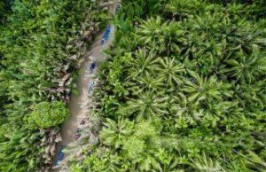 Du lịch Thới Sơn | Kinh nghiệm đi chơi miệt vườn sông nước Tiền Giang